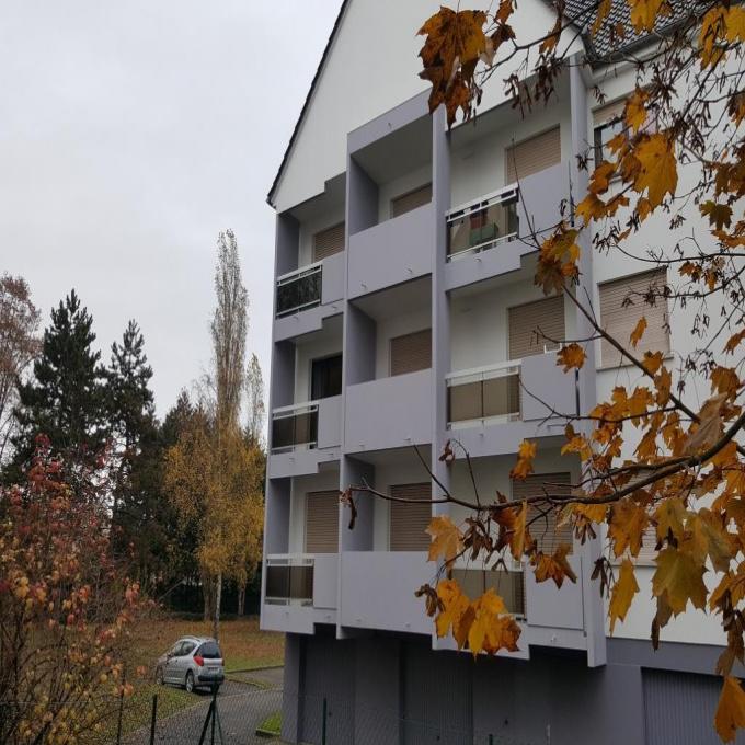 Offres de location Appartement Fegersheim (67640)
